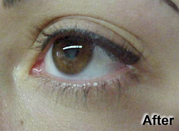 Permanent make up eyeliner for How to make a permanent tattoo